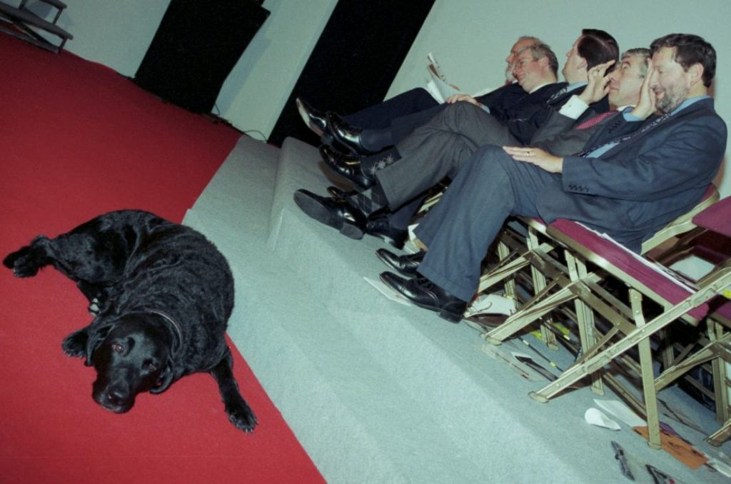 david blunkett labour party conference black pool 1998 photo by david whittworth